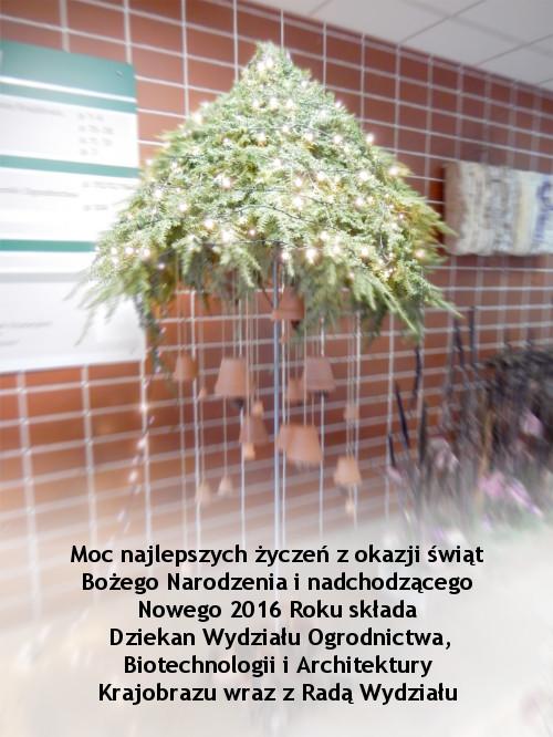 swieta_2015