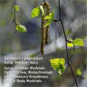 WOBiAK_2017_Wielka